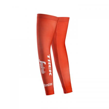 Santini Trek Segafredo Team Thermal - Armwarmers