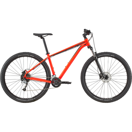 Cannondale Trail 7 2020 -